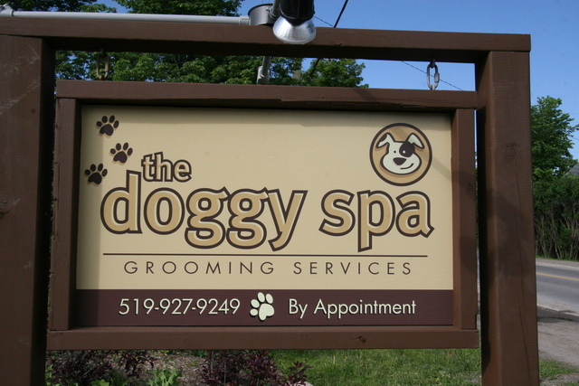 The Doggy Spa